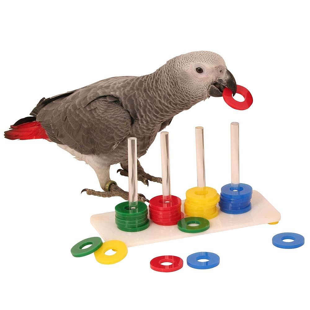 Bird Toy Outlet : Circus toys puzzels