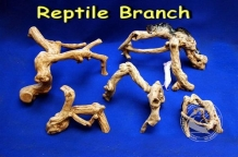 Java Reptielen Branch Large